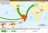 Ressource pour tableau interactif : Les puissances émergentes