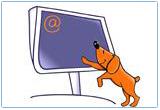 Ressource pour tableau interactif : Les verbes irréguliers